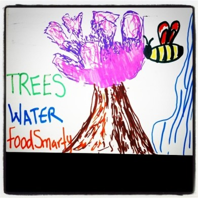 Trees Water Food